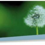 Vivez la Semaine du Développement Durable avec Trifyl