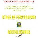 Lavaur : Stage de percussions brésiliennes