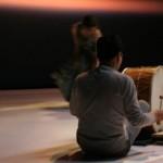 Albi : Cinq Ryoanji