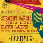 Carmaux : Festival A fleur de peau 2012