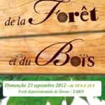 Lisle-sur-Tarn : Fête de la Forêt et du Bois 2012