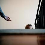 Albi : L'autisme, «une autre musique de l'âme» Donatien Rousseau expose au Conseil Général du Tarn