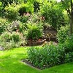 Gaillac : Arbres et petits jardins, Pause café-pause musée au Muséum