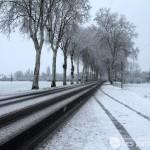Météo : La préfecture du Tarn déclenche l'alerte de niveau 1 «Temps froid»