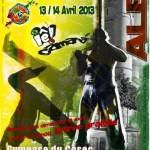 Albi : 1er Festival International de Capoeira au Stadium