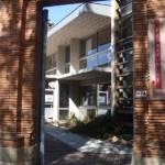 Gaillac : Atelier de peintures végétales à la médiathèque
