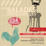 Castanet : Balade œnologique au domaine Labarthe