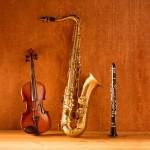 Culture : Remise d'instruments de musique d'étude à la Fédération Musicale du Tarn