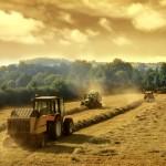 Economie : Cap'Agri Tarn, programme de développement agricole et agro-alimentaire tarnais 2013-2015.