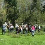 Lisle-sur-Tarn Balade Botanique (c) Groupe APIFERA Tarn