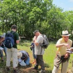 Lisle-sur-Tarn : Balade Botanique avec Christian Conrad
