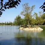 Lisle-sur-Tarn : Pique-nique littéraire au bord du lac