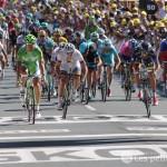 Sport : Tour de France 2013, Peter Sagan premier sur la ligne d'arrivée à Albi
