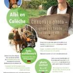 Albi : Concours «photo du mois»