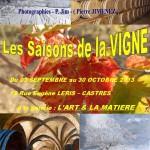 Castres : Exposition Les saisons de la vigne