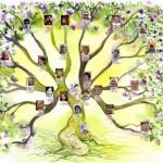 Parisot : Conférence sur la Psychogénéalogie à la médiathèque