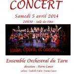 Cahuzac-sur-Vère : L'Ensemble orchestral du tarn en concert à la salle des fêtes