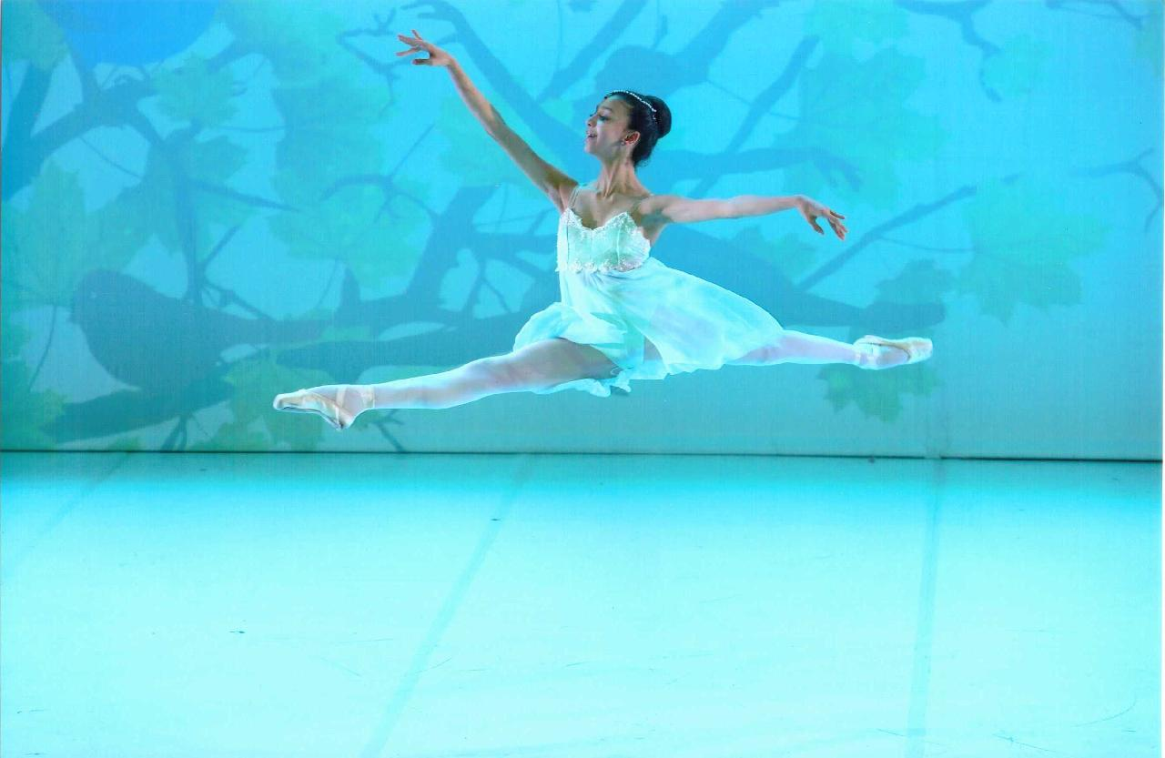 Lenscheune Mariental albi gala de danse classique dans ton tarn
