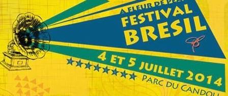carmaux-festival-br-sil-.a-fleur-de-peau.jpg
