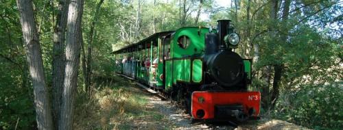chemin-de-fer-touristique-du-tarn.jpg