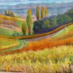 Paysage (c) Jean-Claude Egidio