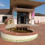 Culture : L'Archéosite de Montans sera gratuit en décembre