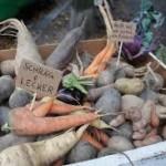 Réalmont : Food Saver film sur le Gaspillage alimentaire