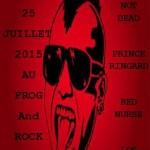 Graulhet : Concert Punk Rock