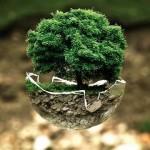 Rabastens : Apéro Citoyen Environnement