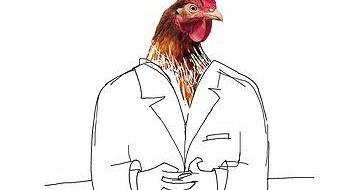 pourquoi-les-poules-pr-f-rent-tre-lev-es.jpg