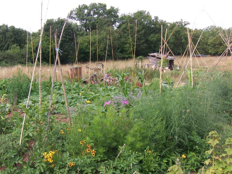Vaour stage le jardin naturel dans ton tarn for Le jardin naturel