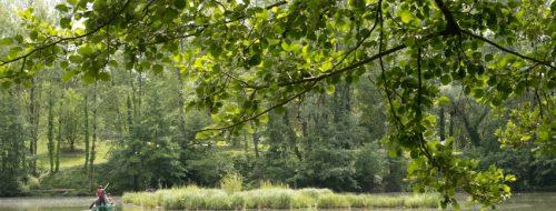Environnement : Albi, capitale de la Biodiversité ! / © © F.Guibilato – Ville d'Albi