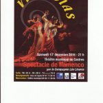 spectacle-de-flamenco-vivencias.jpg