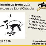 Damiatte : Equitation, concours de sauts d'obstacles au Poney City