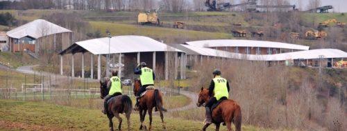 course-dendurance-equestre-regionale.jpg