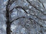 exposition-l-arbre-qui-cache-la-foret.jpg