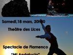 rencontres-albi-flamenca-spectacle-flamenco.jpg