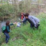 Carmaux : Nettoyage des berges du Cérou