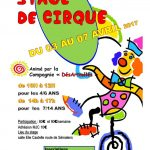 stage-de-cirque-pour-les-4-14-ans.jpg