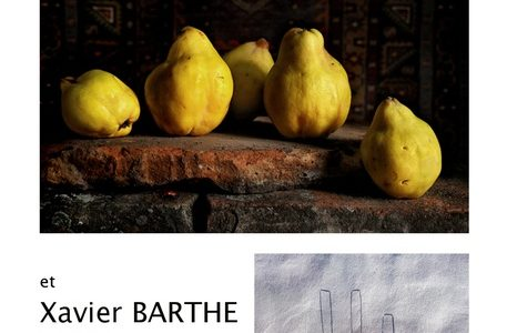 exposition-natures-mortes.jpg