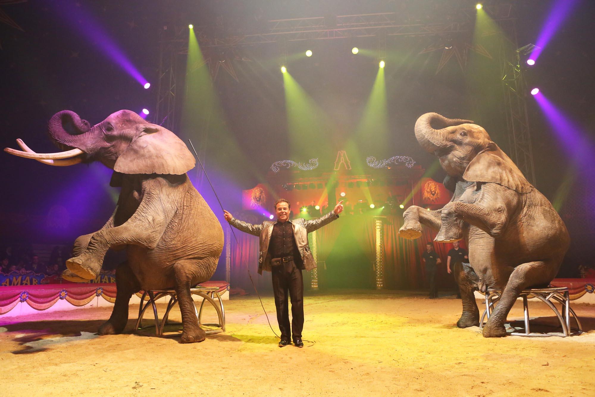 John Falck est ses éléphant / © Cirque Amar