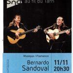 Lautrec : Musique Flamenco à la Salle François Delga