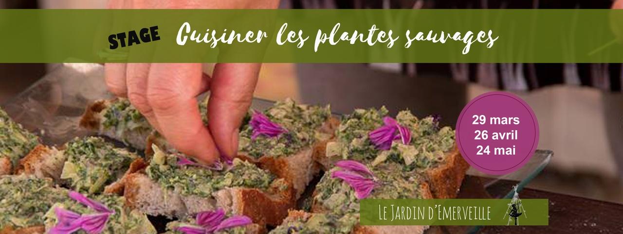 Vaour cuisiner les plantes sauvages stage au jardin d - Cuisiner les herbes sauvages ...