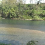 berges du tarn - fleuve