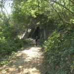 berges du Tarn - promenade