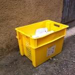 Tarn et Dadou : Modification des jours de collecte pour les Jours fériés 1er, 8 et 9 mai 2013 / © François Darnez - Les petits lézards