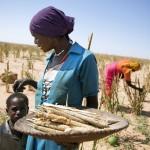 Femmes dans les zones rurales du Darfour / © Albert Gonzalez Farran - UN Photo