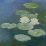 Nymphéas - Claude Monet (c)