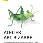 Atelier Art Bizarre (c)
