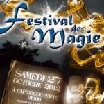 7<sup>ème</sup> festival de magie (c)